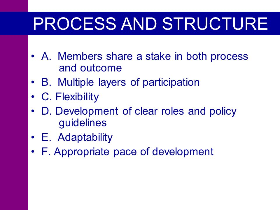 PROCESS AND STRUCTURE A. Members share a stake in both process and outcome B.