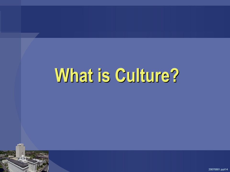 20070881.ppt14 What is Culture?