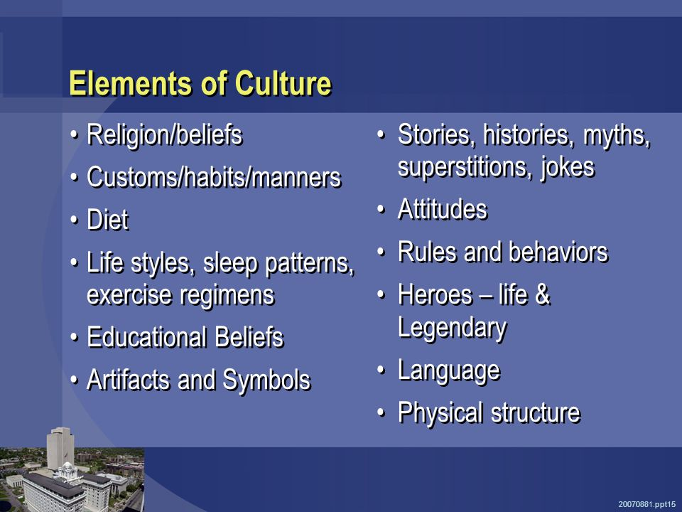 20070881.ppt15 Elements of Culture Religion/beliefs Customs/habits/manners Diet Life styles, sleep patterns, exercise regimens Educational Beliefs Artifacts and Symbols Religion/beliefs Customs/habits/manners Diet Life styles, sleep patterns, exercise regimens Educational Beliefs Artifacts and Symbols Stories, histories, myths, superstitions, jokes Attitudes Rules and behaviors Heroes – life & Legendary Language Physical structure