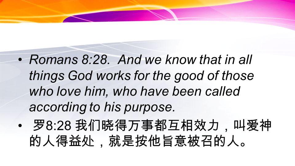 Romans 8:28.
