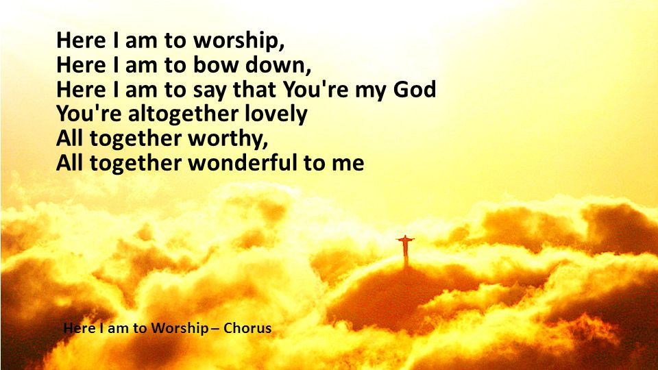 Here I am to worship, Here I am to bow down, Here I am to say that You re my God You re altogether lovely All together worthy, All together wonderful to me Here I am to Worship – Chorus