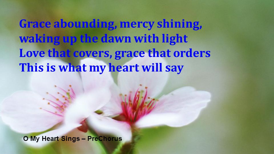 O My Heart Sings – PreChorus Grace abounding, mercy shining, waking up the dawn with light Love that covers, grace that orders This is what my heart w
