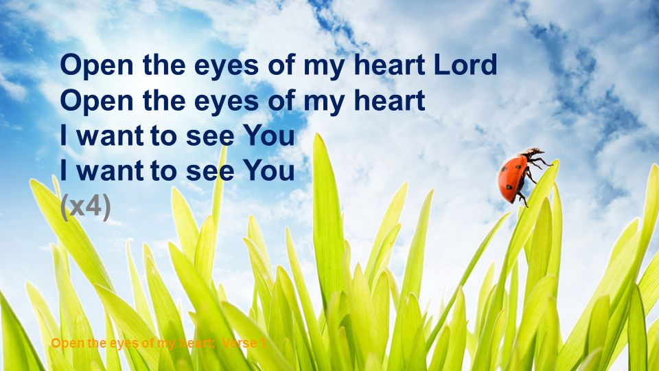 Open the Eyes of My Heart To see You high and lifted up Shining in the light of Your glory Pour out Your power and love As we sing holy, holy, holy (x2) Open the eyes of my heart: Chorus