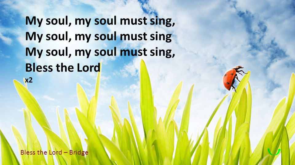 My soul, my soul must sing, My soul, my soul must sing My soul, my soul must sing, Bless the Lord x2 Bless the Lord – Bridge