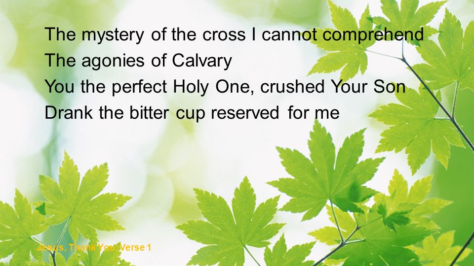 The mystery of the cross I cannot comprehend The agonies of Calvary You the perfect Holy One, crushed Your Son Drank the bitter cup reserved for me Je