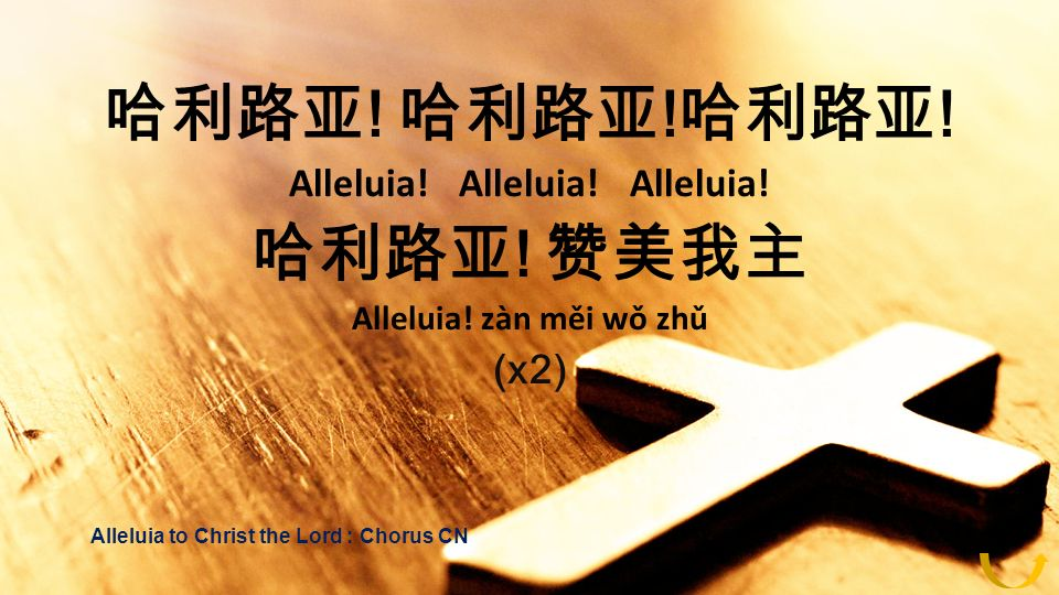 ! ! ! Alleluia! Alleluia! Alleluia! ! Alleluia! zàn měi wǒ zhǔ (x2) Alleluia to Christ the Lord : Chorus CN