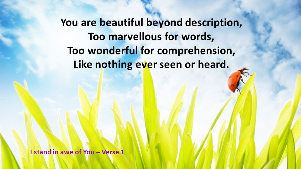You are beautiful beyond description, Too marvellous for words, Too wonderful for comprehension, Like nothing ever seen or heard. I stand in awe of Yo