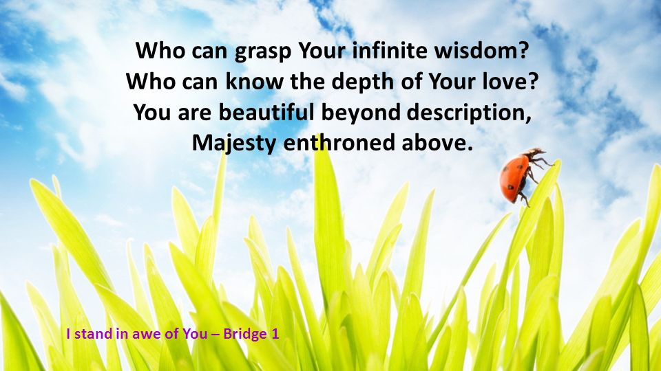 Who can grasp Your infinite wisdom? Who can know the depth of Your love? You are beautiful beyond description, Majesty enthroned above. I stand in awe