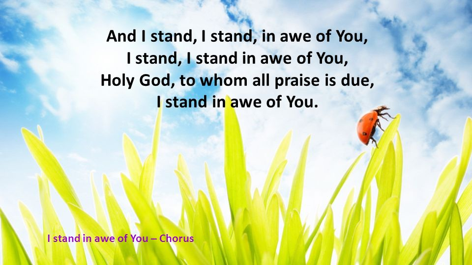 And I stand, I stand, in awe of You, I stand, I stand in awe of You, Holy God, to whom all praise is due, I stand in awe of You. I stand in awe of You