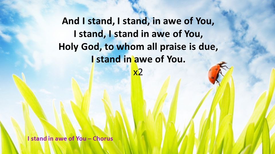 And I stand, I stand, in awe of You, I stand, I stand in awe of You, Holy God, to whom all praise is due, I stand in awe of You. x2 I stand in awe of