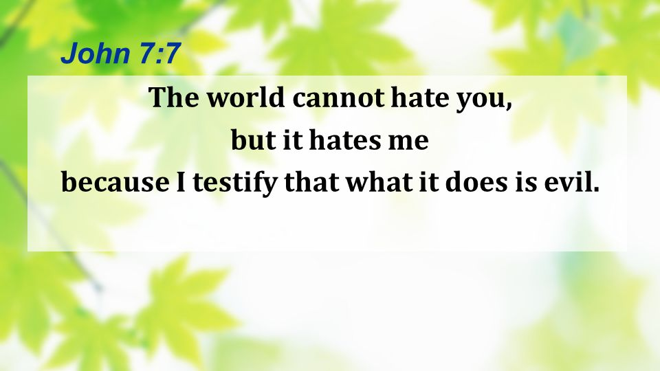 The world cannot hate you, but it hates me because I testify that what it does is evil. John 7:7