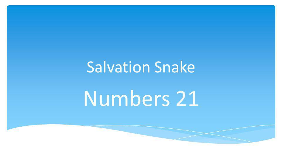 Salvation Snake Numbers 21