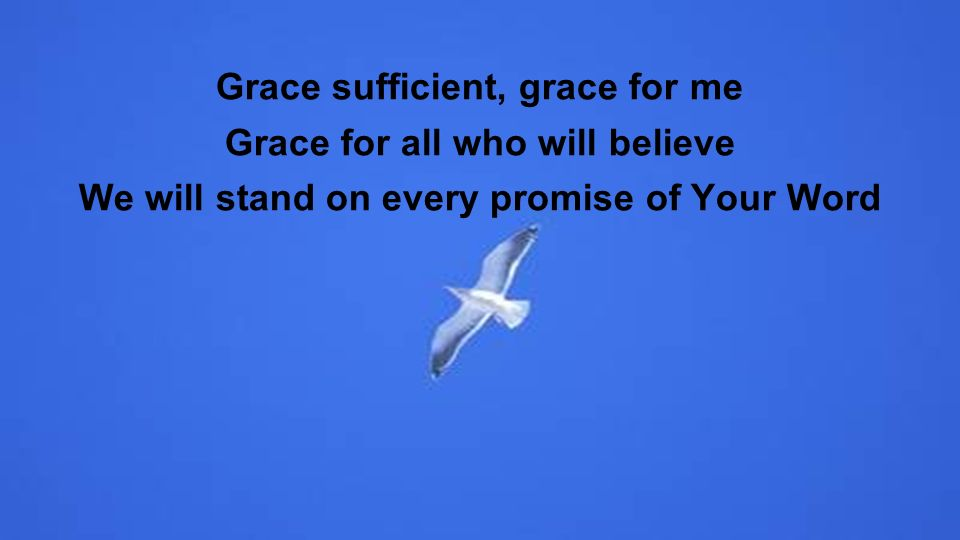 Grace sufficient, grace for me Grace for all who will believe We will stand on every promise of Your Word