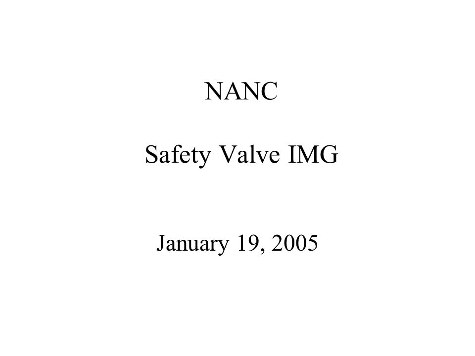 NANC Safety Valve IMG January 19, 2005