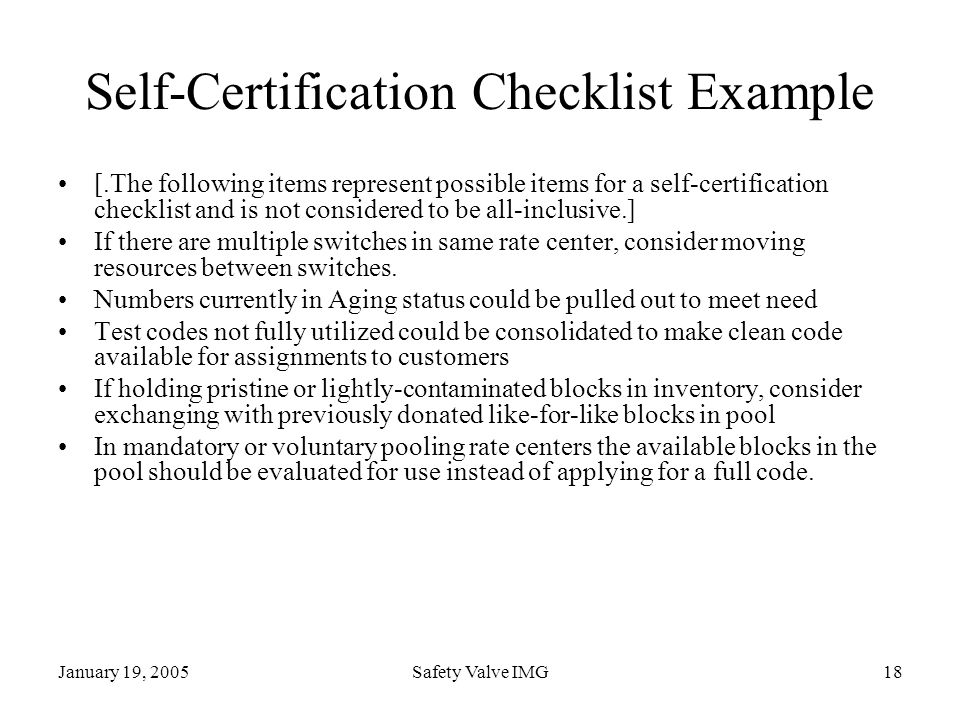 January 19, 2005Safety Valve IMG18 Self-Certification Checklist Example [.The following items represent possible items for a self-certification checkl