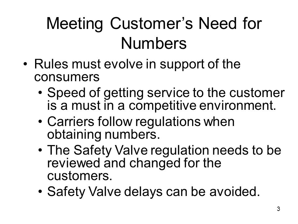 3 Meeting Customers Need for Numbers Rules must evolve in support of the consumers Speed of getting service to the customer is a must in a competitive environment.