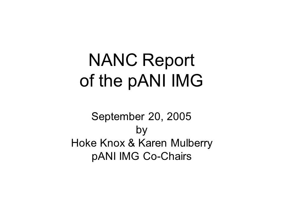 NANC Report of the pANI IMG September 20, 2005 by Hoke Knox & Karen Mulberry pANI IMG Co-Chairs