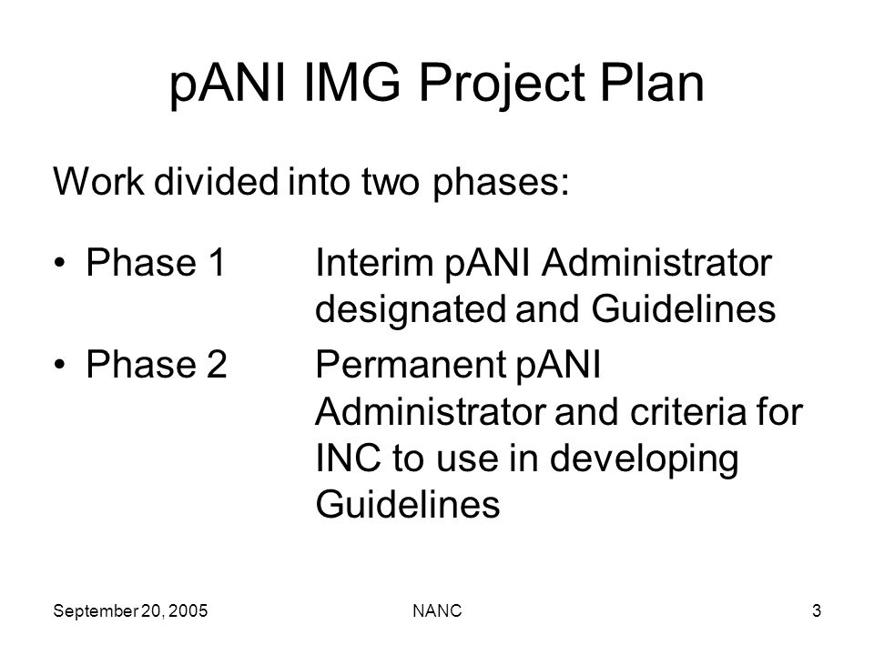 September 20, 2005NANC3 pANI IMG Project Plan Work divided into two phases: Phase 1Interim pANI Administrator designated and Guidelines Phase 2Permane