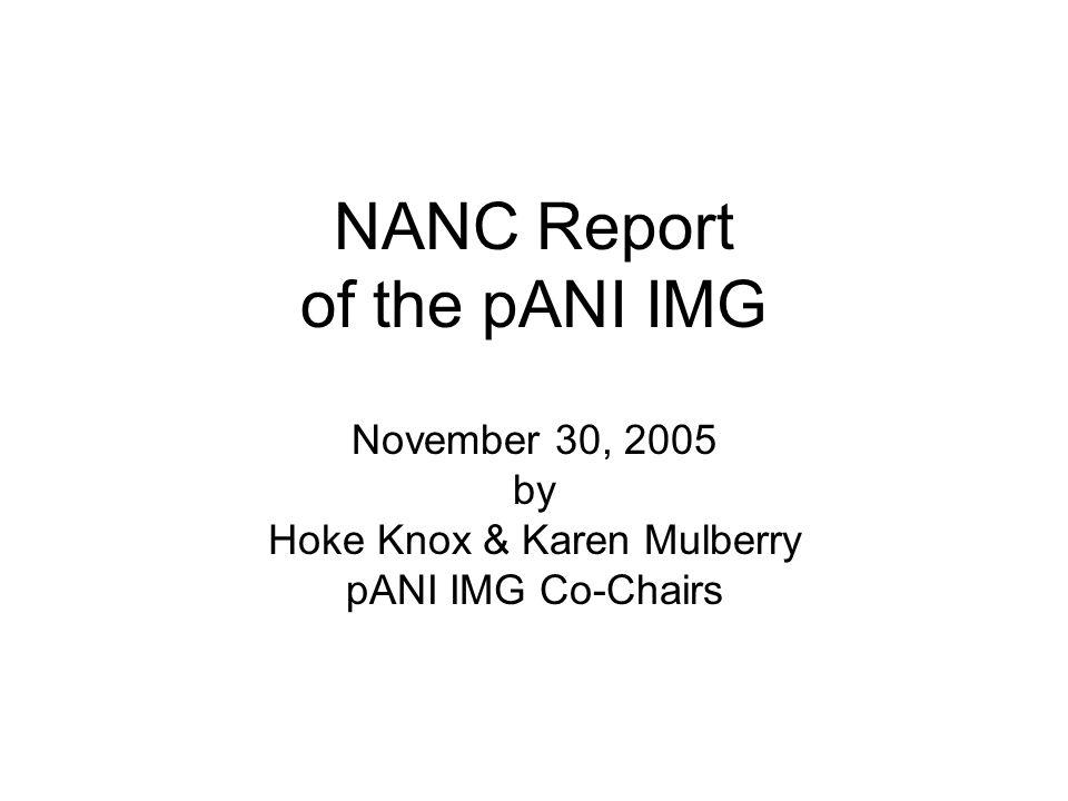 NANC Report of the pANI IMG November 30, 2005 by Hoke Knox & Karen Mulberry pANI IMG Co-Chairs