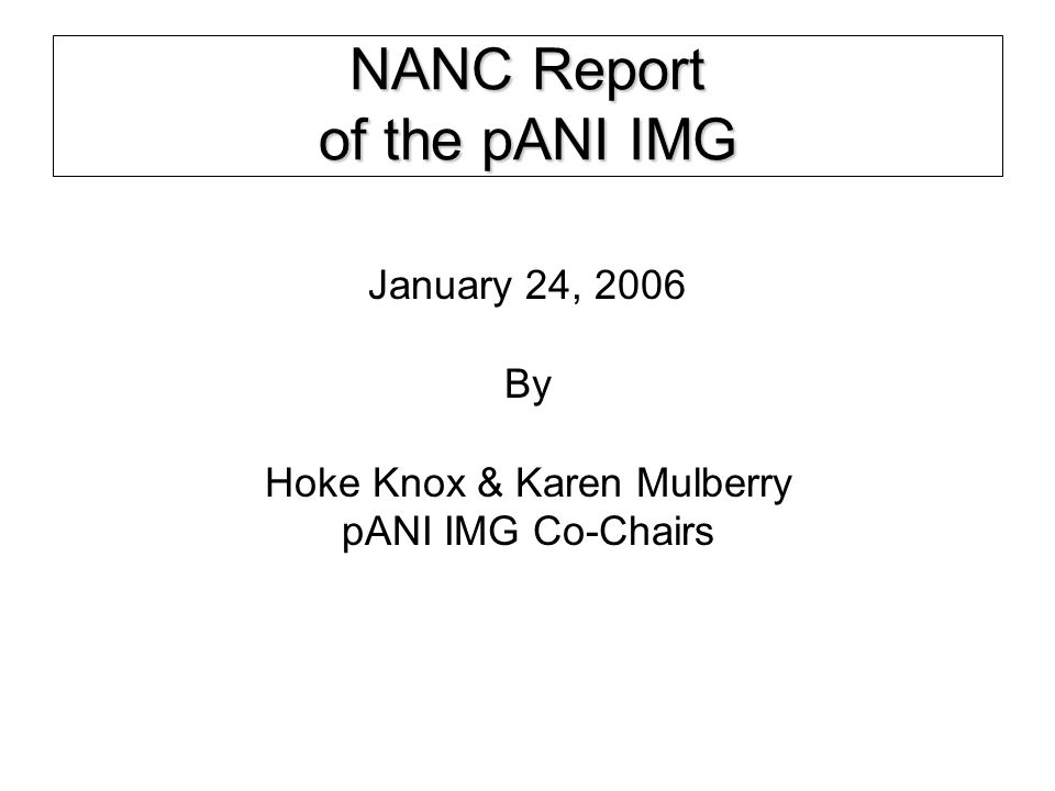 January 24, 2006NANC2 Work continues on the permanent pANI Administration recommendation for NANC: –IMG has reached consensus on four of the guiding principles and policies associated with permanent pANI administration.