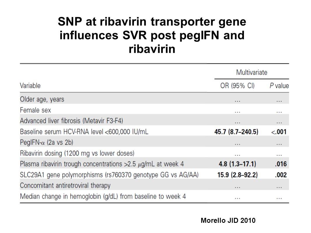 SNP at ribavirin transporter gene influences SVR post pegIFN and ribavirin Morello JID 2010