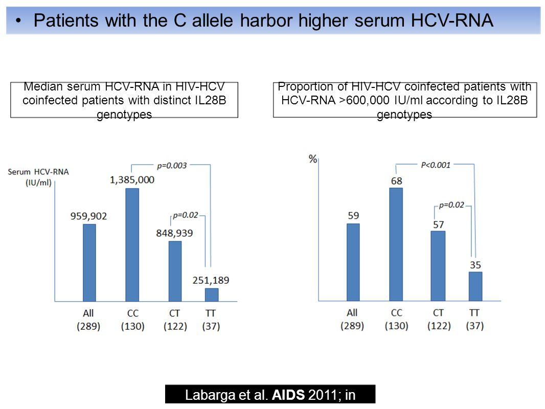 Patients with the C allele harbor higher serum HCV-RNA Labarga et al.