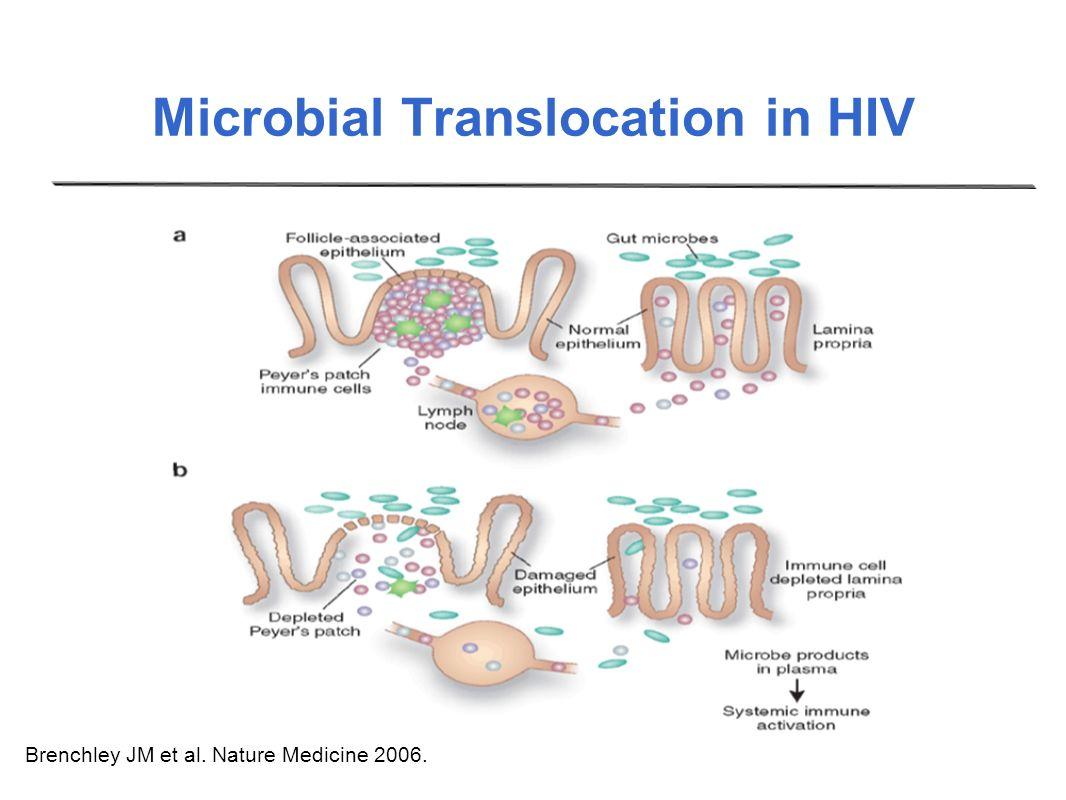 Microbial Translocation in HIV HIV + Brenchley JM et al. Nature Medicine 2006. HIV -