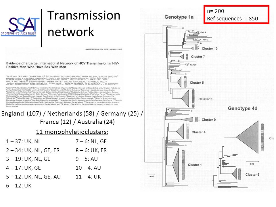 Transmission network England (107) / Netherlands (58) / Germany (25) / France (12) / Australia (24) 11 monophyletic clusters: n= 200 Ref sequences = 8