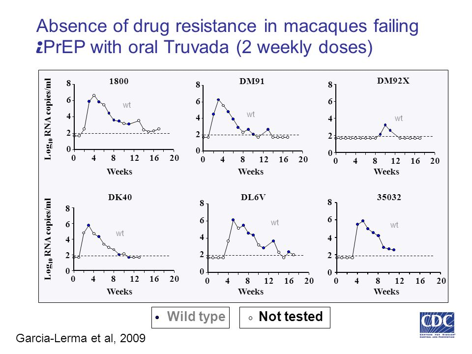 Absence of drug resistance in macaques failing i PrEP with oral Truvada (2 weekly doses) 048121620 0 2 4 6 8 048121620 0 2 4 6 8 Log 10 RNA copies/ml 1800DM91 DM92X Weeks DK40DL6V 048121620 0 2 4 6 8 Log 10 RNA copies/ml 048121620 0 2 4 6 8 Weeks 048121620 0 2 4 6 8 Weeks wt 0 2 4 6 0481216 20 8 Weeks wt Wild type 35032 Not tested Garcia-Lerma et al, 2009