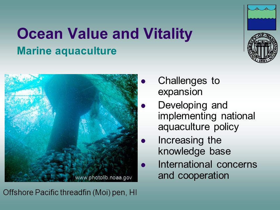 Ocean Value and Vitality Challenges to expansion Developing and implementing national aquaculture policy Increasing the knowledge base International c