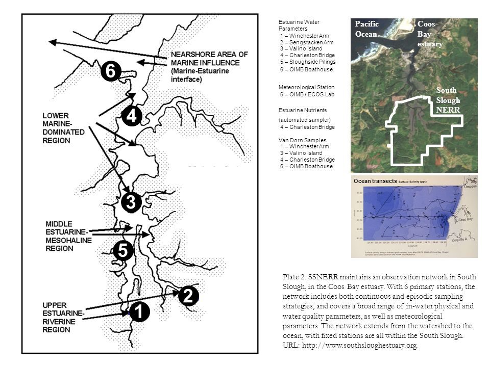Plate 2: SSNERR maintains an observation network in South Slough, in the Coos Bay estuary. With 6 primary stations, the network includes both continuo