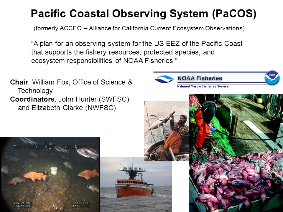 Pacific Coastal Observing System (PaCOS) (formerly ACCEO – Alliance for California Current Ecosystem Observations) A plan for an observing system for