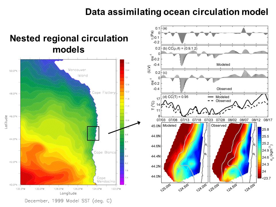 Data assimilating ocean circulation model Nested regional circulation models