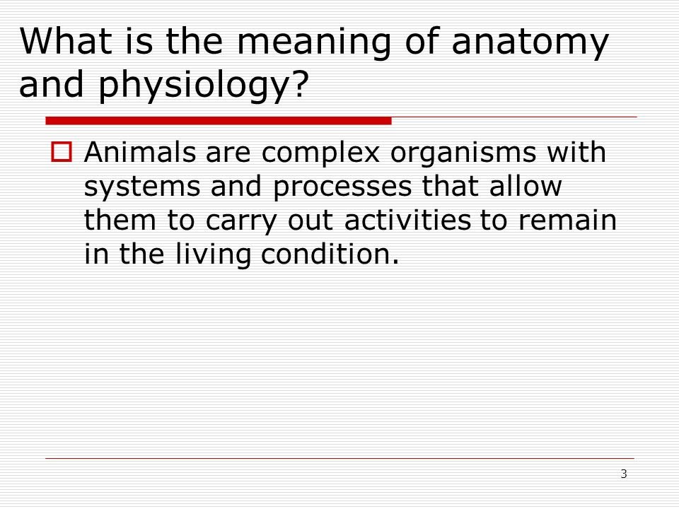 3 What is the meaning of anatomy and physiology? Animals are complex organisms with systems and processes that allow them to carry out activities to r