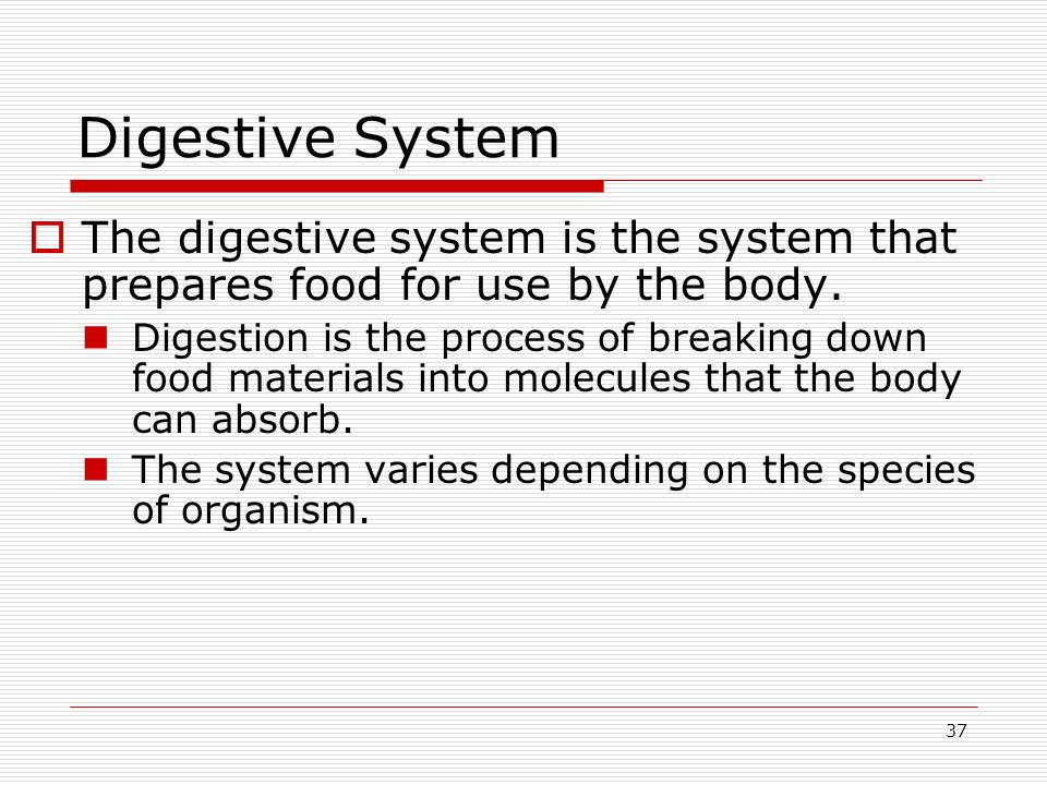 37 Digestive System The digestive system is the system that prepares food for use by the body. Digestion is the process of breaking down food material