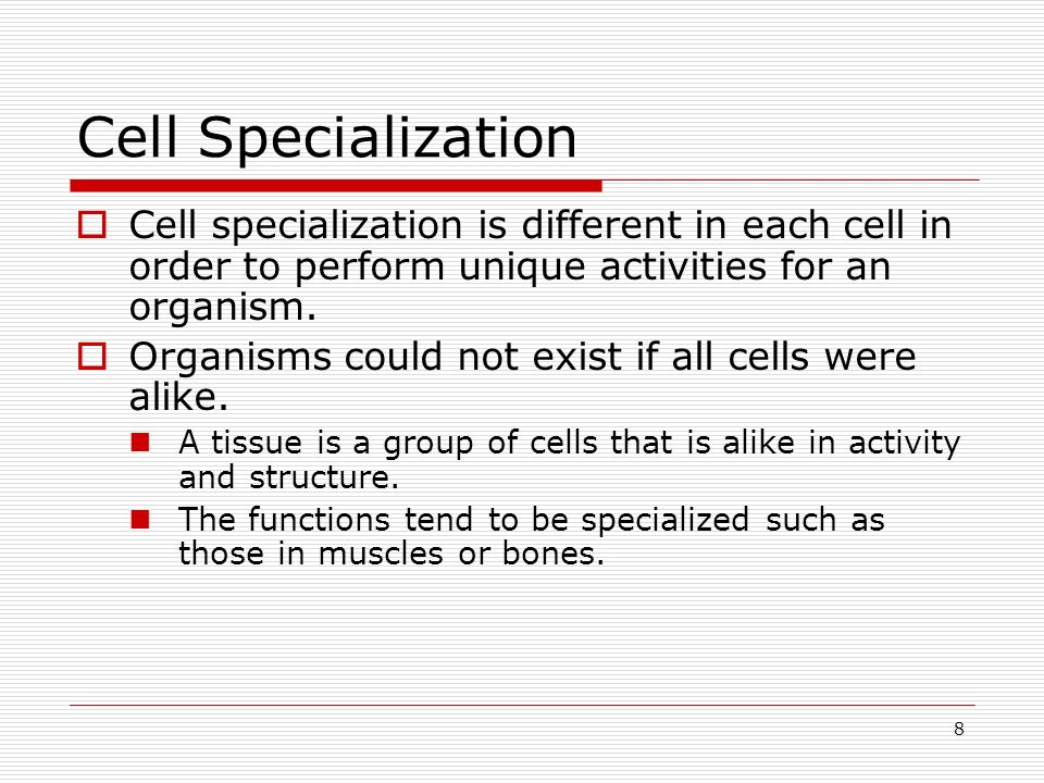 8 Cell Specialization Cell specialization is different in each cell in order to perform unique activities for an organism. Organisms could not exist i