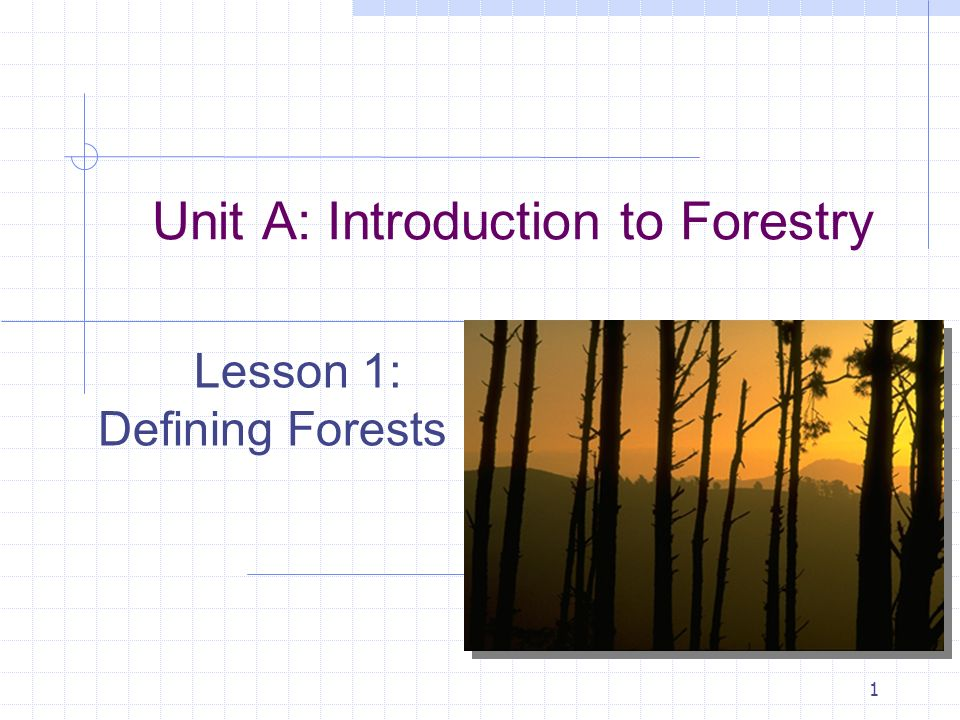 1 Unit A: Introduction to Forestry Lesson 1: Defining Forests