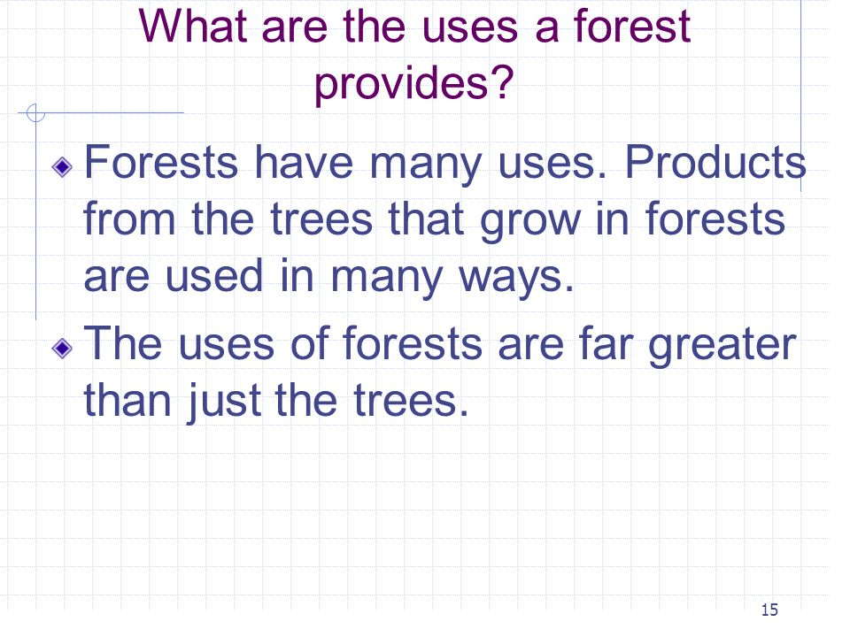15 What are the uses a forest provides? Forests have many uses. Products from the trees that grow in forests are used in many ways. The uses of forest