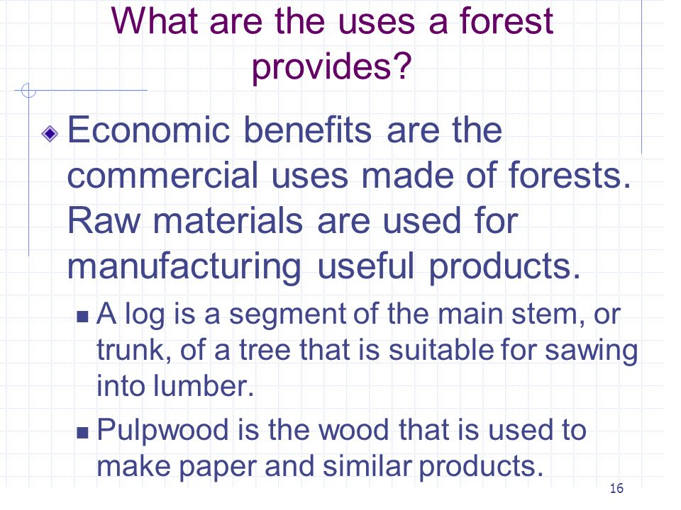 16 What are the uses a forest provides? Economic benefits are the commercial uses made of forests. Raw materials are used for manufacturing useful pro