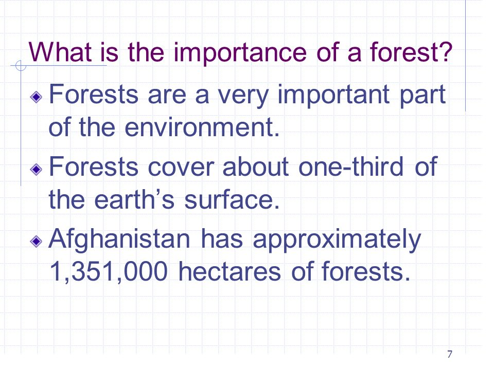 7 What is the importance of a forest? Forests are a very important part of the environment. Forests cover about one-third of the earths surface. Afgha