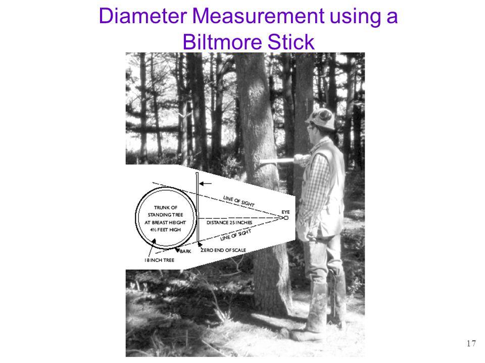 17 Diameter Measurement using a Biltmore Stick