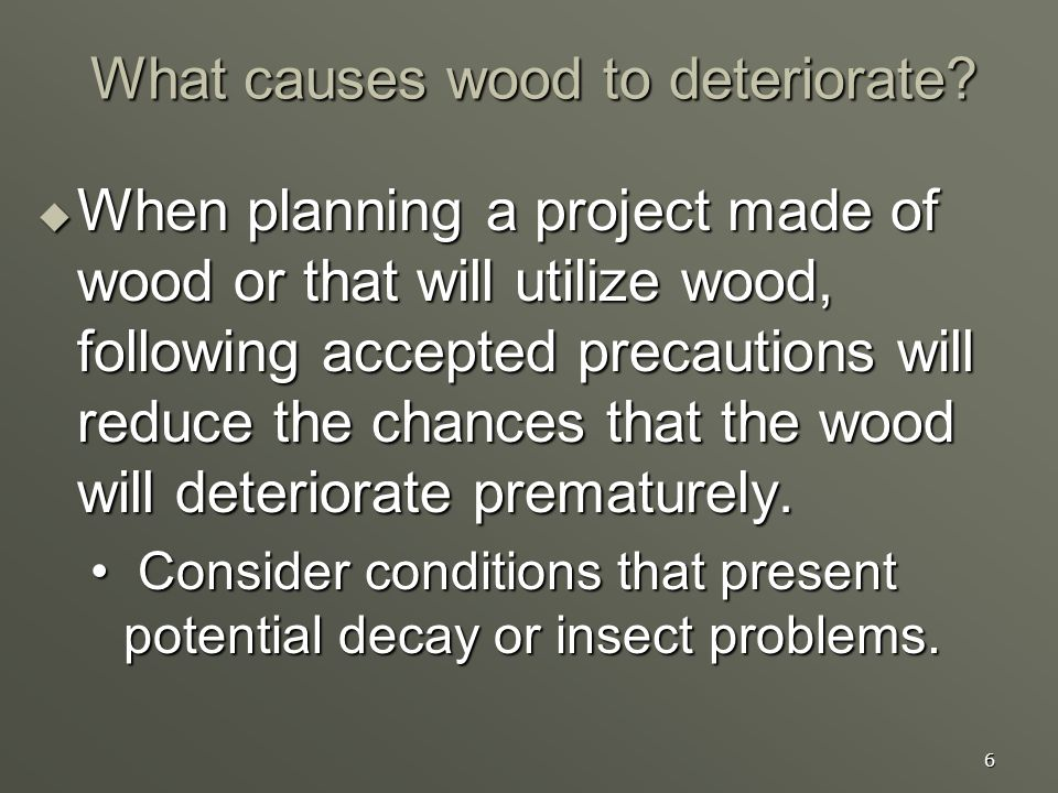 6 What causes wood to deteriorate? When planning a project made of wood or that will utilize wood, following accepted precautions will reduce the chan
