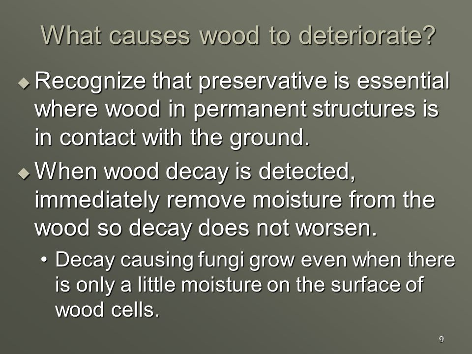 9 What causes wood to deteriorate? Recognize that preservative is essential where wood in permanent structures is in contact with the ground. Recogniz