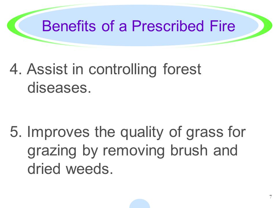 7 Benefits of a Prescribed Fire 4. Assist in controlling forest diseases. 5. Improves the quality of grass for grazing by removing brush and dried wee