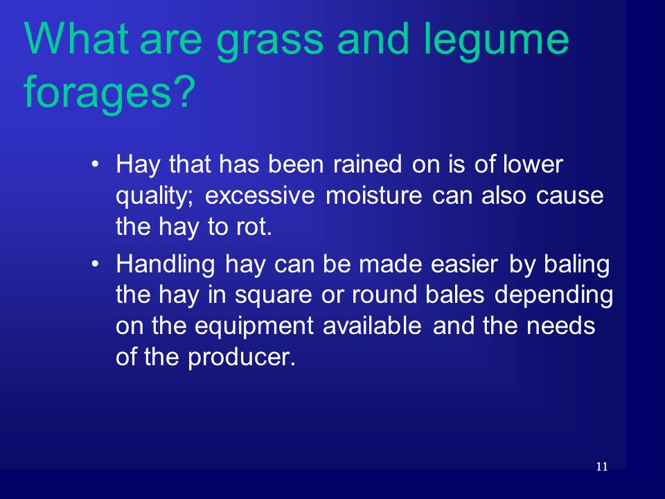 11 Hay that has been rained on is of lower quality; excessive moisture can also cause the hay to rot. Handling hay can be made easier by baling the ha