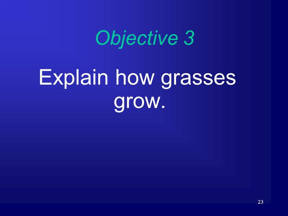 23 Objective 3 Explain how grasses grow.