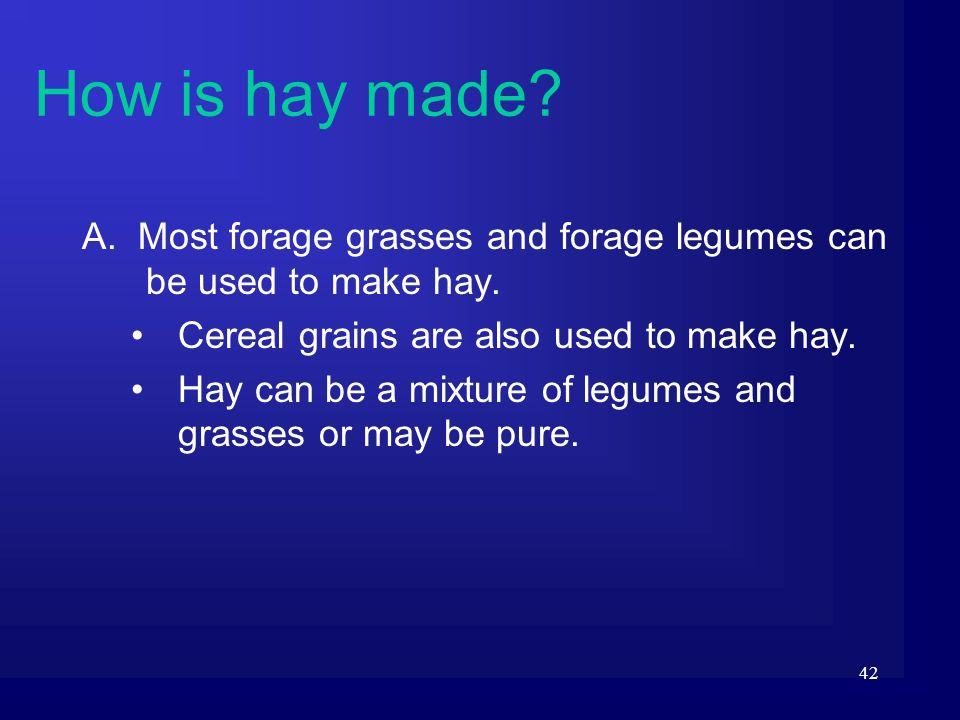 42 A. Most forage grasses and forage legumes can be used to make hay. Cereal grains are also used to make hay. Hay can be a mixture of legumes and gra