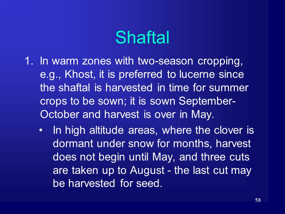 58 Shaftal 1. In warm zones with two-season cropping, e.g., Khost, it is preferred to lucerne since the shaftal is harvested in time for summer crops
