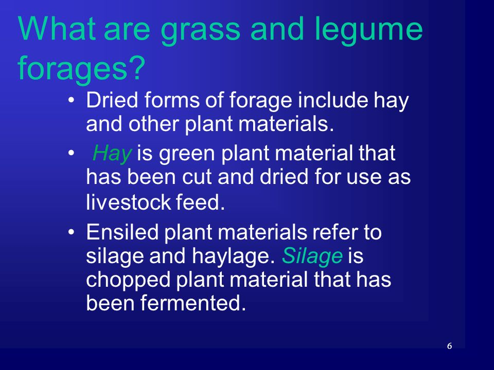 6 What are grass and legume forages? Dried forms of forage include hay and other plant materials. Hay is green plant material that has been cut and dr