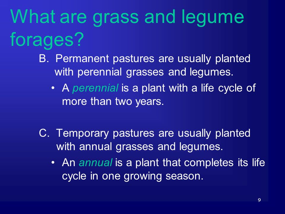9 B. Permanent pastures are usually planted with perennial grasses and legumes. A perennial is a plant with a life cycle of more than two years. C. Te